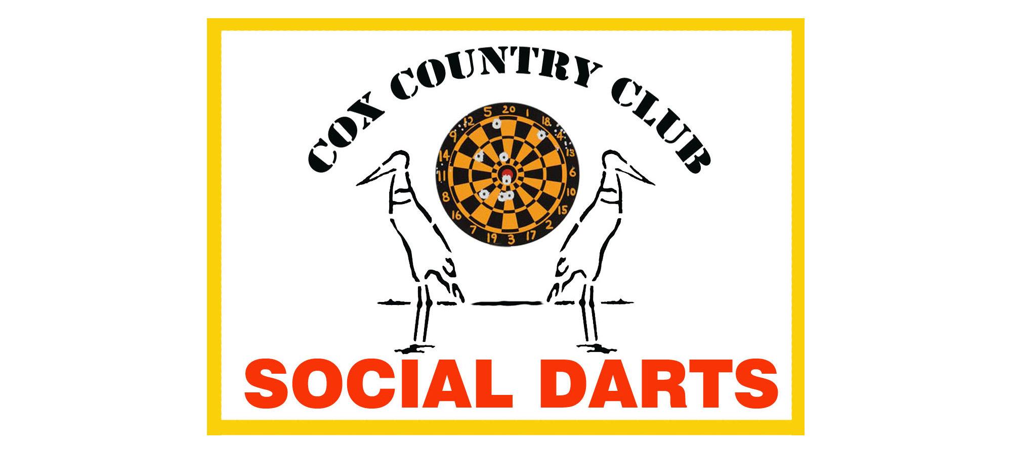 Download Social Darts image